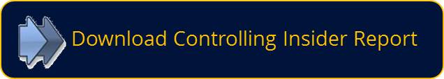 Download Controlling Insider Report Nr: 08